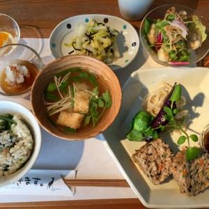 lunch_zentai