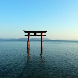 大阪のサプライズプロポーズ 白鬚神社:*