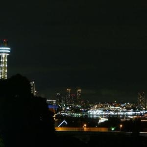 大阪のサプライズプロポーズ 港のみえる丘公園