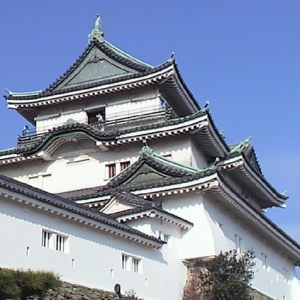 大阪のサプライズプロポーズ 和歌山城