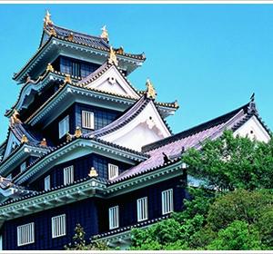 大阪のサプライズプロポーズ 岡山城
