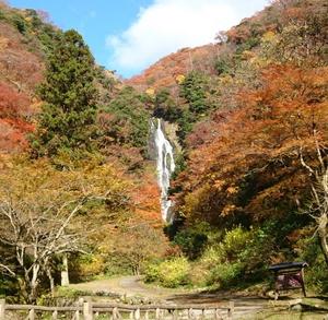 大阪のサプライズプロポーズ 神庭の滝自然公園