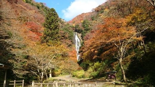 心斎橋・大阪のサプライズプロポーズ 神庭の滝自然公園