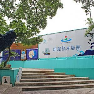 大阪のサプライズプロポーズ 新屋島水族館
