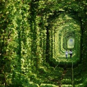 大阪のサプライズプロポーズ 愛のトンネル♪