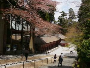 心斎橋・大阪のサプライズプロポーズ 比叡山・ガーデンミュージアム比叡