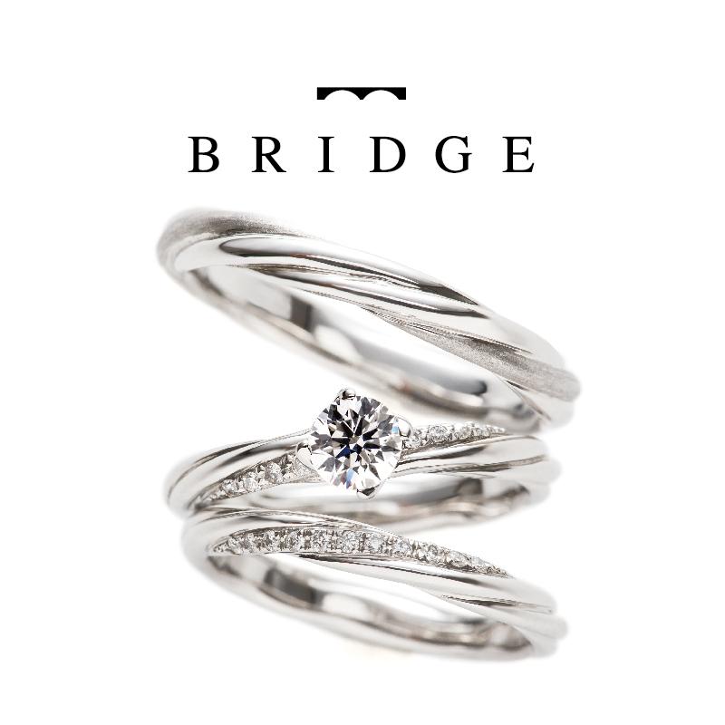 BRIDGE_bond plecius set-01