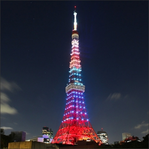 心斎橋・大阪のサプライズプロポーズ 東京タワー