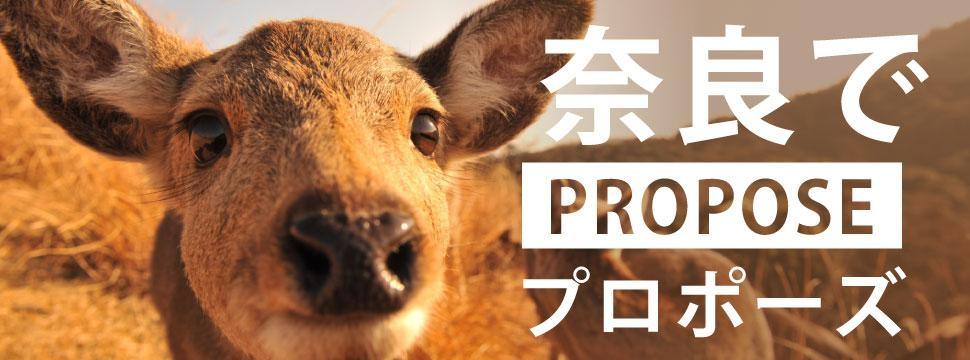 奈良のおすすめプロポーズスポットのイメージ